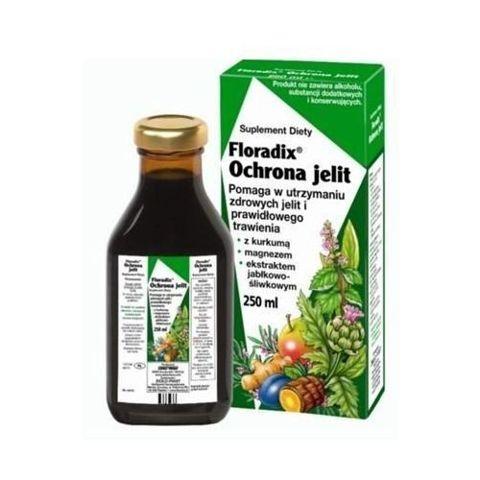 Floradix Ochrona jelit  tonik 250ml